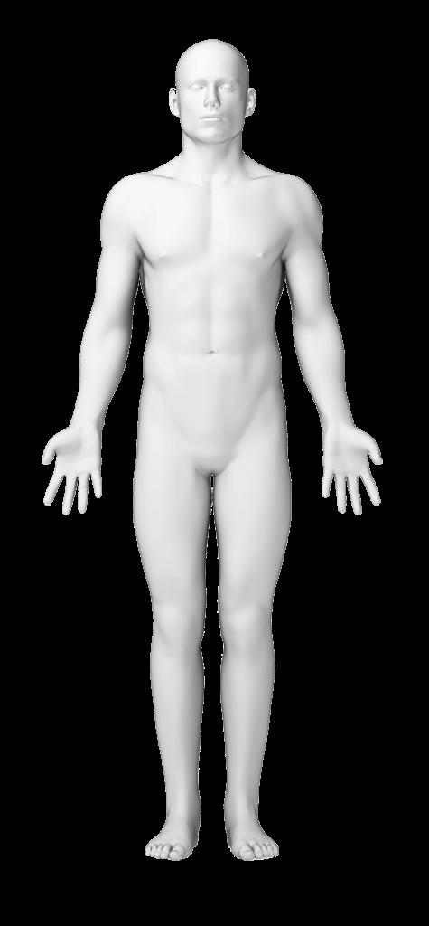 גוף האדם פיצויים